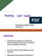 Healing and Repair