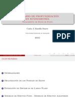 1 Panel.pdf