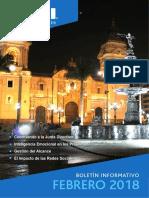 Boletín - Pmi - Febrero 2018