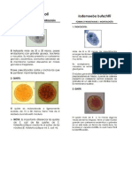 Guía parásitos