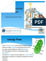 3 - energy flow and nutrient cycles