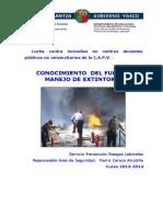 fuego_2013_c.pdf