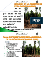 PRESENTACIÓN RESERVA BIOSFERA BOSAWAS II.pptx