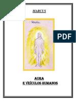 Aura e Veiculos Humanos PDF