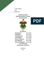 117236636-Laporan-Validasi-Spektrofotometri.docx