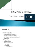 Campos y Ondas_ Vectores