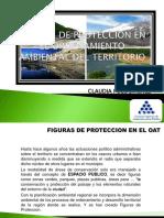Presen Tacion 5 Figuras de Proteccion en El Oat y Ot Esap