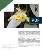 Revisión Literatura del Cultivo de Vainilla (1).docx