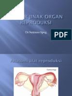 6. Tumor Jinak Organ Reproduksi Dr. Yulice
