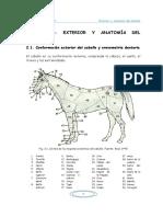 Comunidad_Emagister_59201_Exterior_y_anatomia_del_caballo.pdf