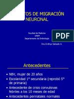 Defectos de Migracion