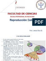 2. Reproduccion Celular