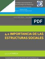 IMPORTANCIA DE LAS ESTRUCTURAS SOCIALES