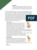 CASO-5-ENFERMEDADES2.docx