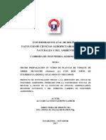 Proyecto de Investigación Tomate de Arbol Silvestre Alvaro Xavier Pazmiño 2017