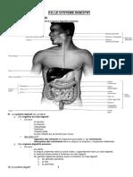 Fonction Digestive