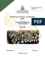 Programa final Primer semestre.pdf