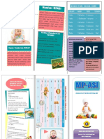 Leaflet Mpasi