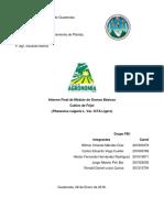 Informe Final Fb1
