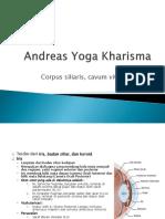 Anatomi Mata Yoga