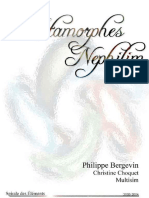 NEPHILIM Exemple Metamorphe