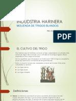 INDUDSTRIA HARINERA