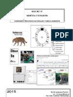Guia de Tp 2015 Genc3a9tica y Evolucic3b3n