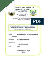 Informe de Evaluación de Parametros de Campo de Aguas Residuales - 2017.