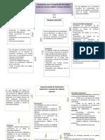 Lineamientos para la organización del trabajo