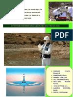 336431736-Informe-TOXI.docx