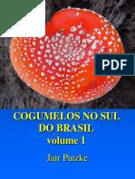 Cogumelos No Sul Do Brasil. v. 1 - Jair Putzke