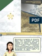 consideracionesProyMatriz.pdf