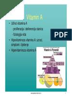 Vitamini.pdf
