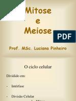 mitose_meiose ppt