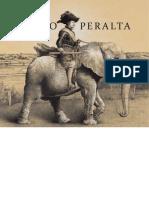 Pedro_Peralta_en_MNAV.pdf