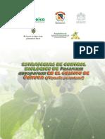 Estrategias de Control Biológico de Fusarium Oxysporum en El Cultivo de La Uchuva Physalis Peruviana.