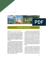 Vegetación y uso de suelo_inecc.pdf
