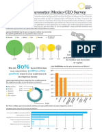 Mexico CEO Survey Infographic