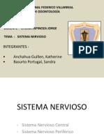 Sistema Nervioso Expo de Anato-ppt