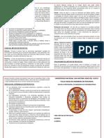 Modelo Dedíptico (Metodo de Poryecto)