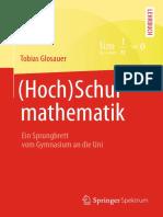 (Hoch)Schulmathematik.pdf