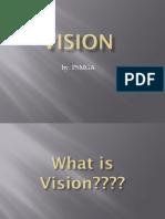Materi Vision (Pap)