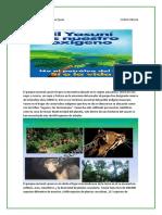 Proyecto de Vida Parque Nacional Yasuni Itt