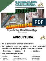 Presentacion3 Aves 2009 (1)