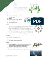 Desarrollo Sustentabl1 Pao