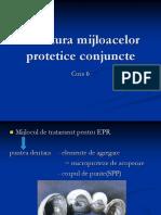 C6 EPR - Structura Mijloacelor Protetice Conjuncte