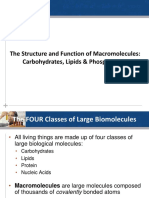 8. Structure and Function of Macromolecules