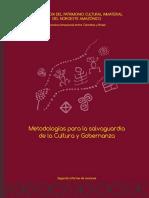 Salvaguardia PCI Amazonia