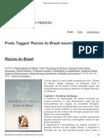 Raízes Do Brasil Resumo _ Fonte Histórica