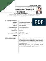 Cv. Cyntia Canchaya (Seguridad)